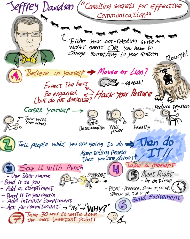 "Visual summary of ""Consulting Secrets of Effective Communication"" for Mix-IT 2014 in Lyon, France"
